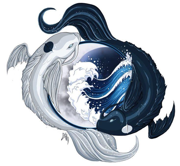 Koi Yang Live Ying Fish