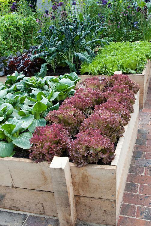 Soil Raised Vegetable Garden