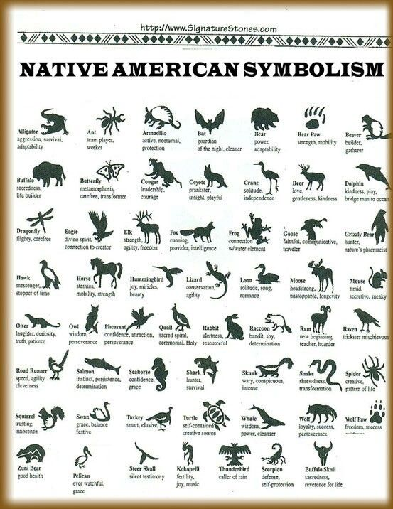 Animals And Their Meanings Native American