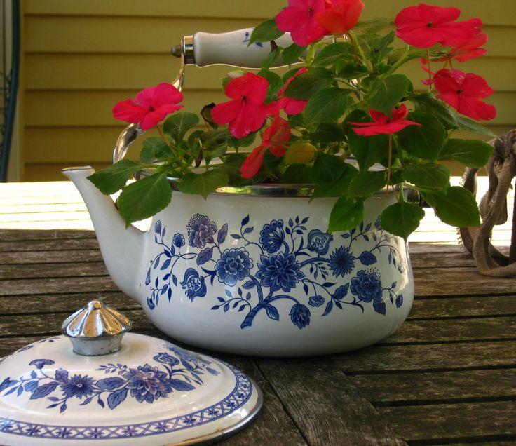 Indoor Flower Plants Online