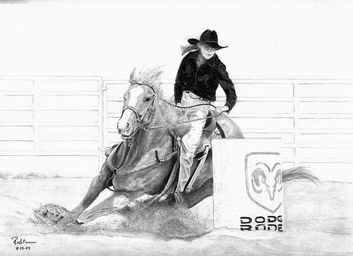 1000 Images About Cakes Barrel Racing On Pinterest