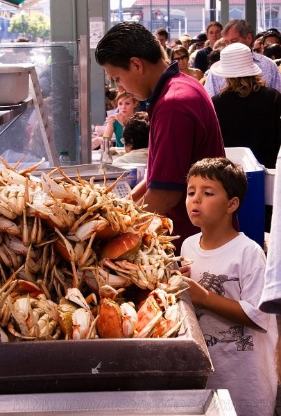 Best Seafood San Francisco Fishermans Wharf