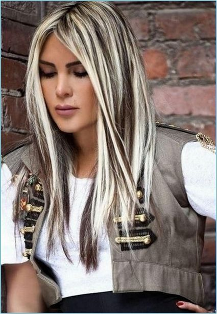 Hide Hairstyles Gray Highlights Hair Lowlights Long And