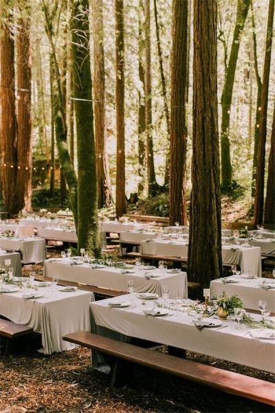 Best 25+ Woodland wedding dress ideas only on Pinterest ...