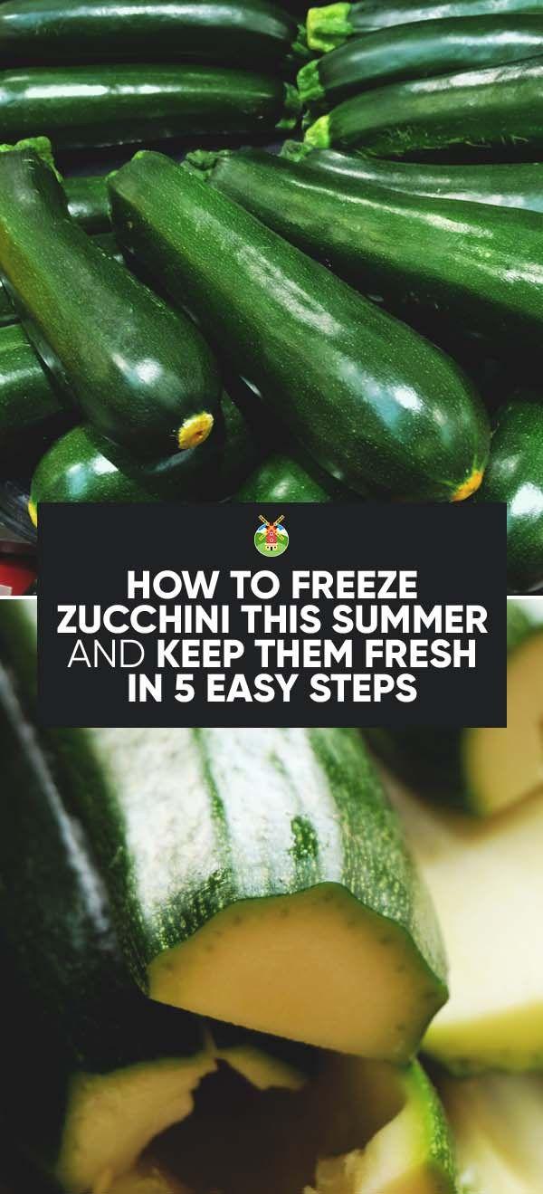 What Best Way Freeze Fresh Zucchini