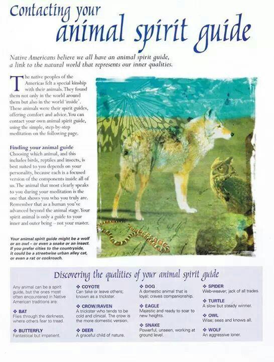 Types Spirit Animals