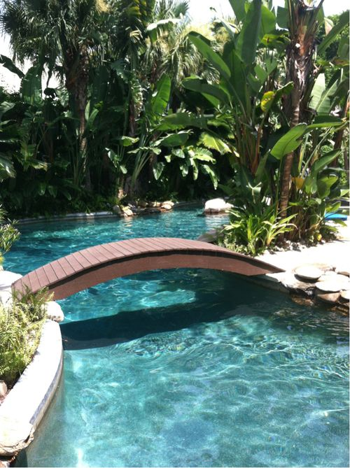 Foot Forty Tropical Yard Back Pool