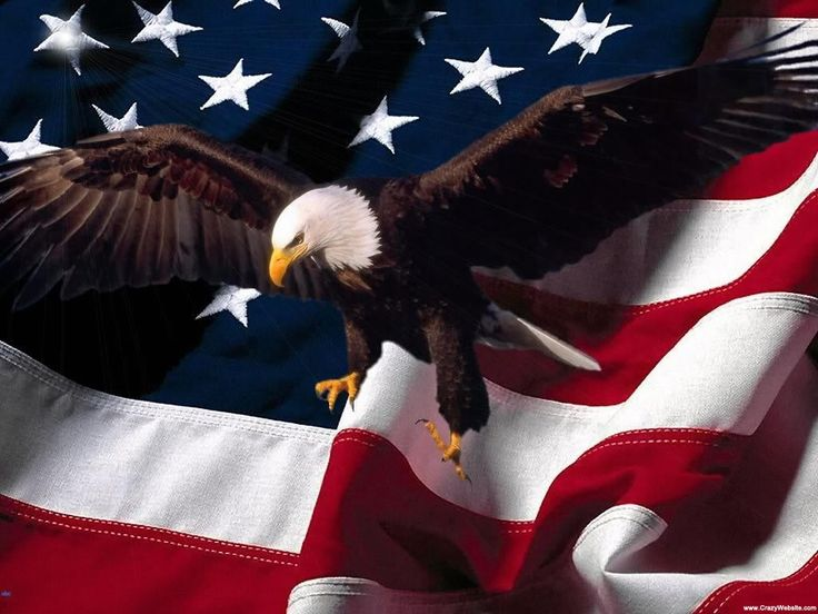 Independence Wallpaper Day American Native