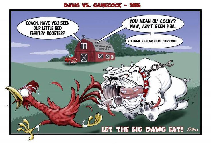 Georgia Bulldog Football Funny Cartoons