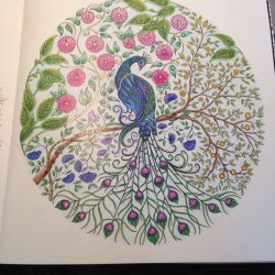 Secret Garden Coloring Book Peacock Embroidery A