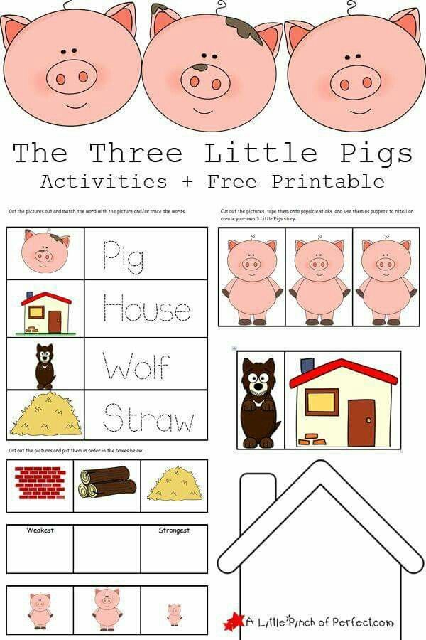Logical Relationships Preschool Activities