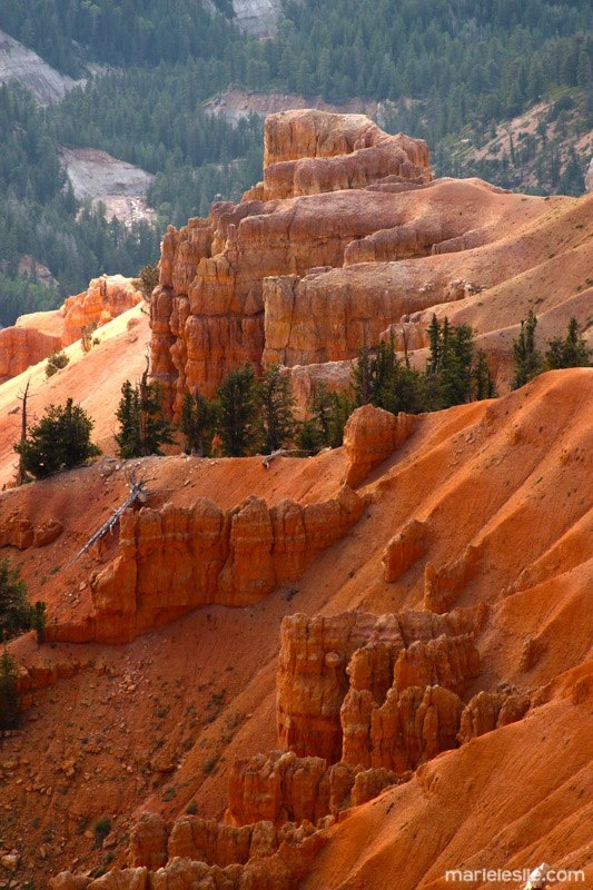 Cedar City Utah National Parks