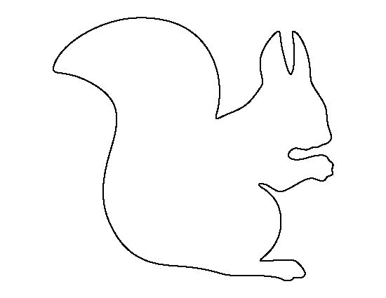 Squirrel Outline Template