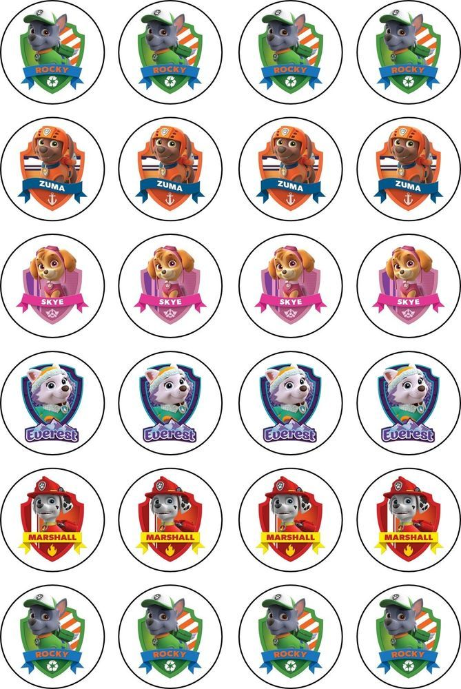 Paw Patrol Characters Rice Paper 24 Edible Cupcake Toppers