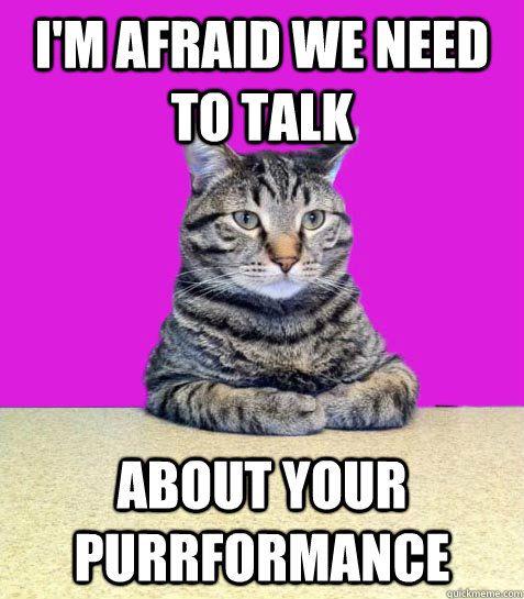 Performance Evaluation Funny Meme