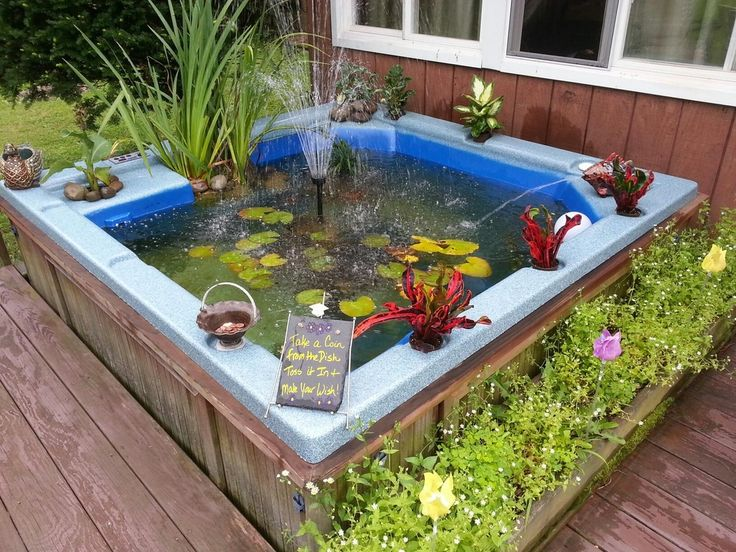 Best Fish Small Outdoor Pond