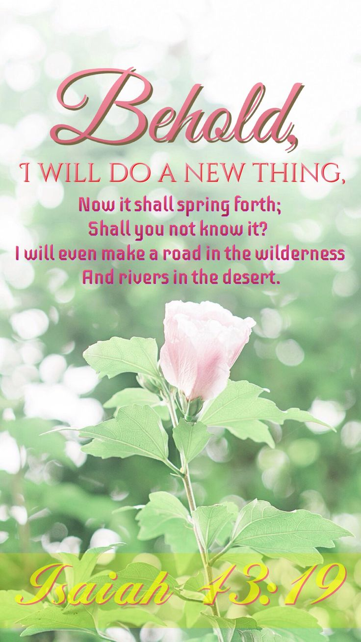 First Day Spring Scriptures