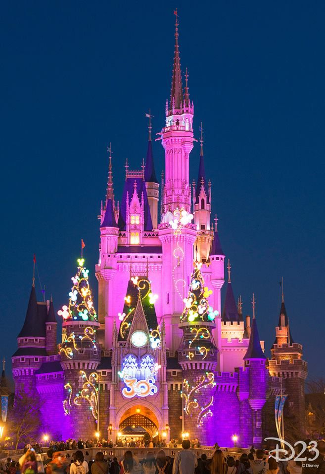 Walt Disney World Honeymoon Ideas