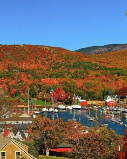 Fall Leaves Picture Maine Town