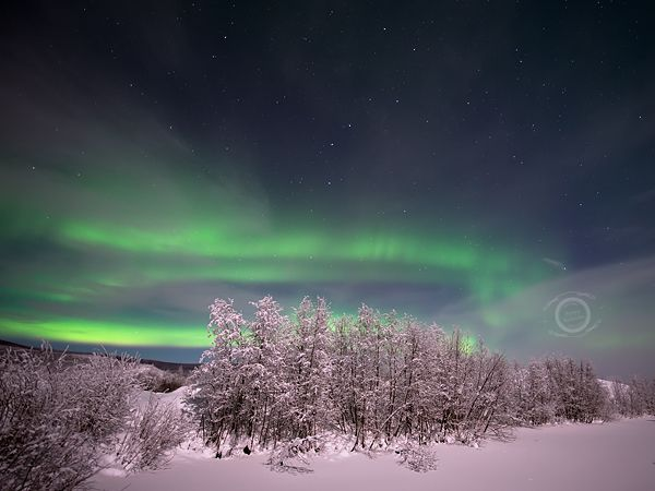 Cheap Northern Lights Cruise