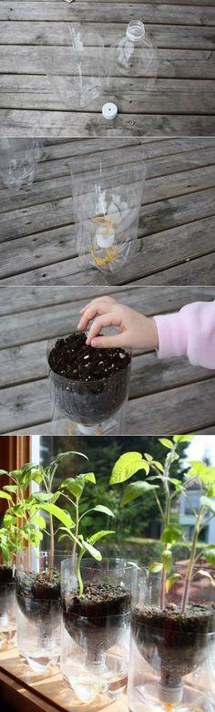Are Plastic Pots Safe Growing Vegetables
