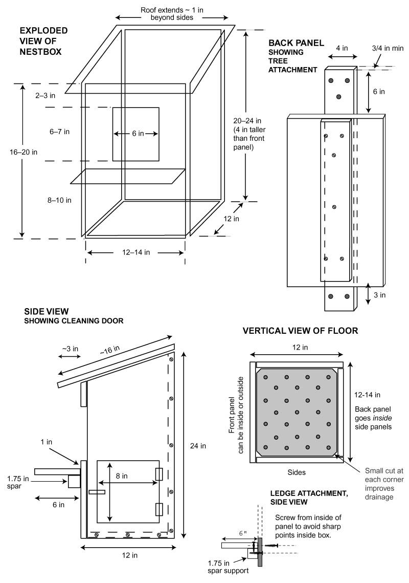 Great Horned Owl Bird House Plans