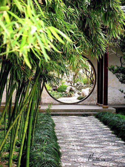 Quot Suzhou Bamboo Gardens Quot Suzhou China Photograph By Marti