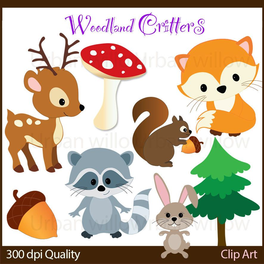 WOODLAND CRITTERS 10 piece clip art set in premium quality ...