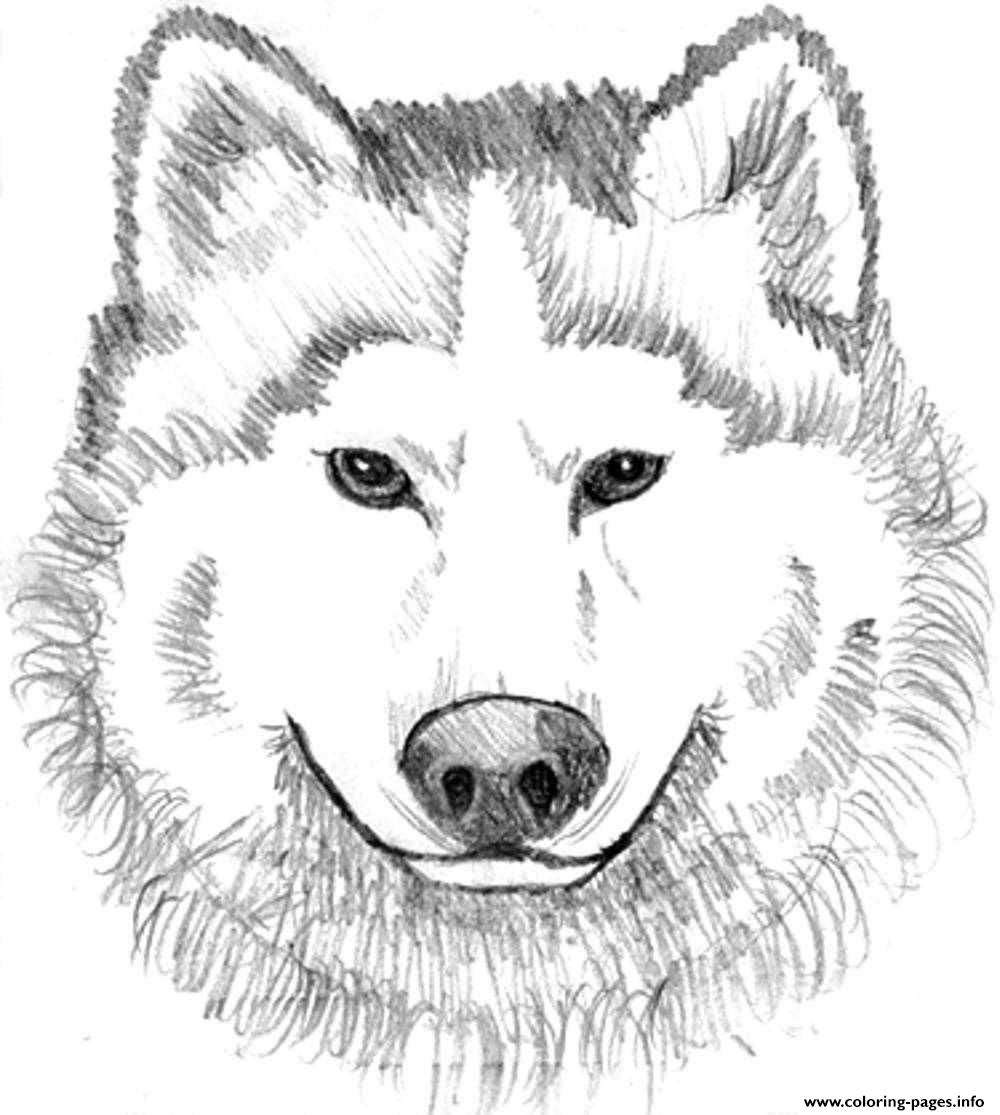 Print Realistic Wolf Face Coloring Pages Diy And Crafts