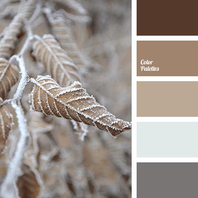 Beige Color Combination Color Matching Color Solution
