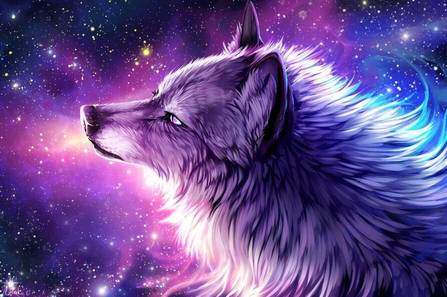 Galaxy wolf | Wolves and werewolfs | Pinterest | Wolf ...