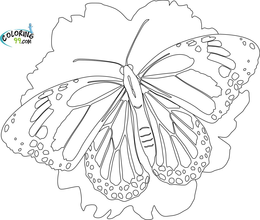 Butterfly Coloring Pages Coloring99 Fantasy Coloring