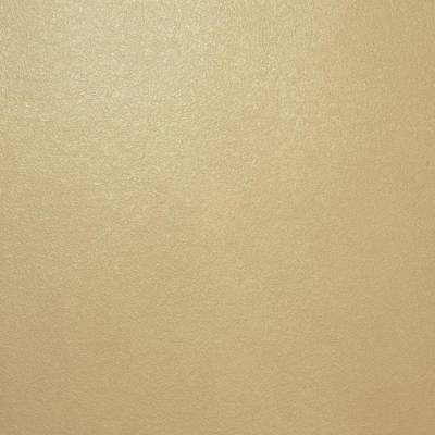Ralph Lauren 1 Gal Pale Luster Gold Metallic Specialty
