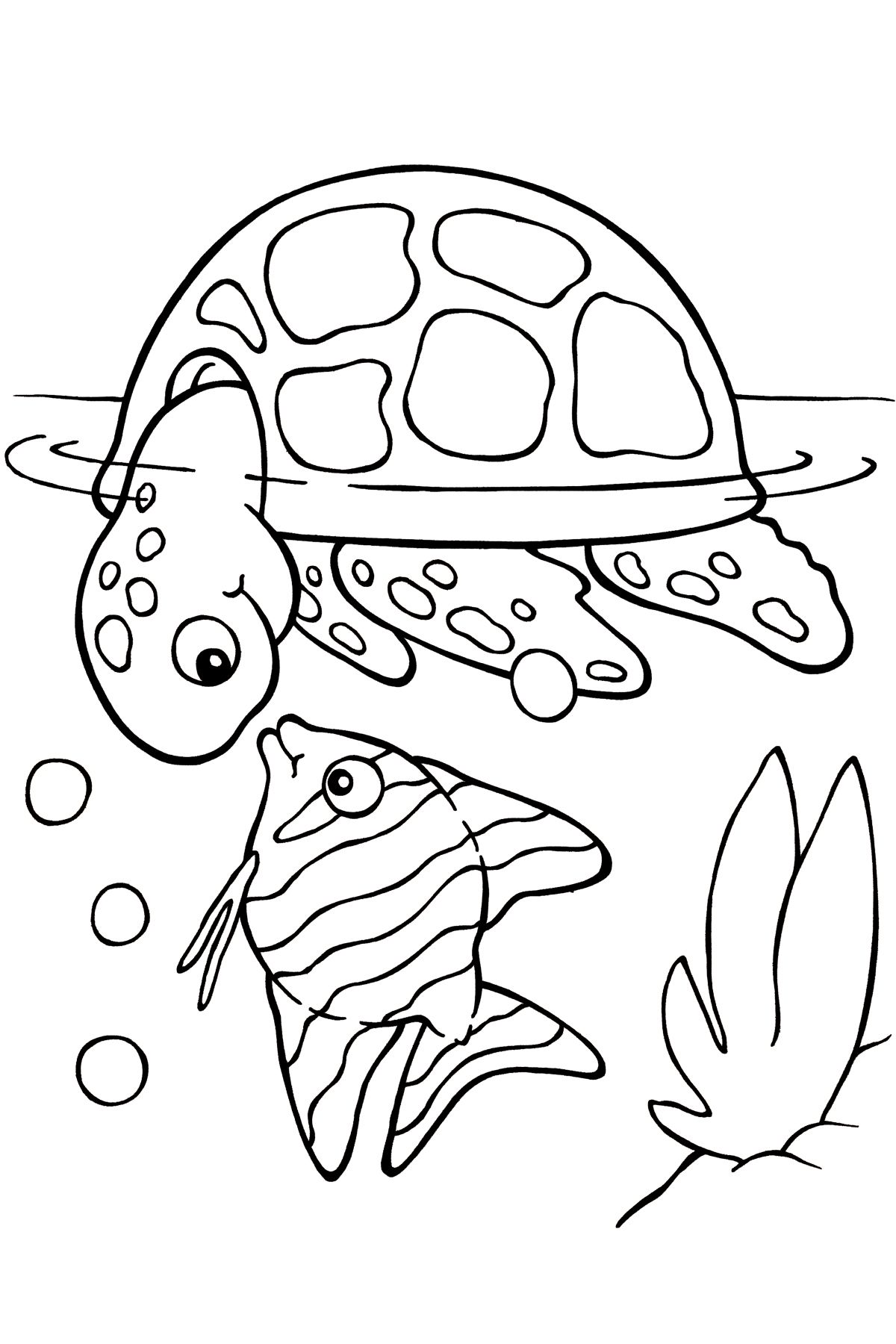 Coloring Page Coloring Pinterest Turtle Spring Colors And