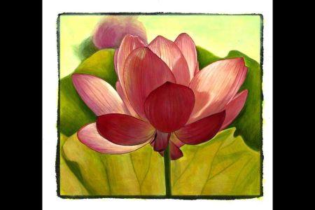 The lotus flower book flower images 2018 flower images the lotus flowers poems ellen bryant voigt amazon the lotus flowers poems ellen bryant voigt amazon com books the lotus eaters novel wikipedia the lotus mightylinksfo
