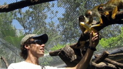 Chimp Attacks Texas Student: Andrew Oberle Fighting for His Life After 6-Hour Surgery Video ...
