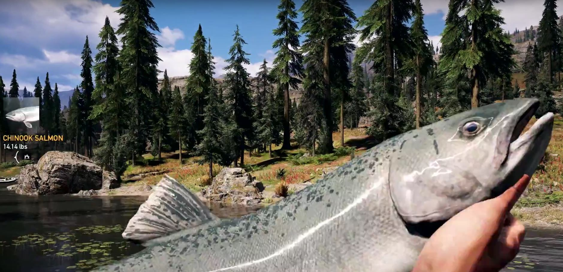 PETA Condemns  Far Cry 5  for     Fishing