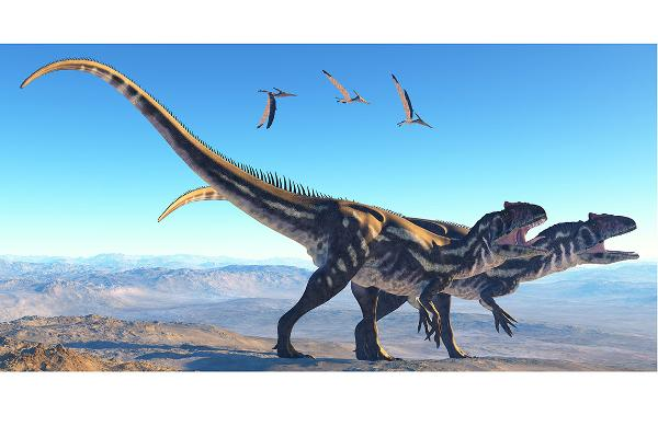 Cycle Allosaurus Info I Need Life About