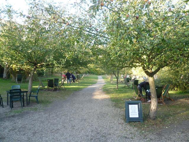 The Orchard Tea Gardens Grantchester 169 Marathon Cc By Sa