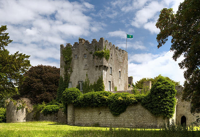 Castles Of Leinster Cloghan Offaly 1 169 Mike Searle Cc