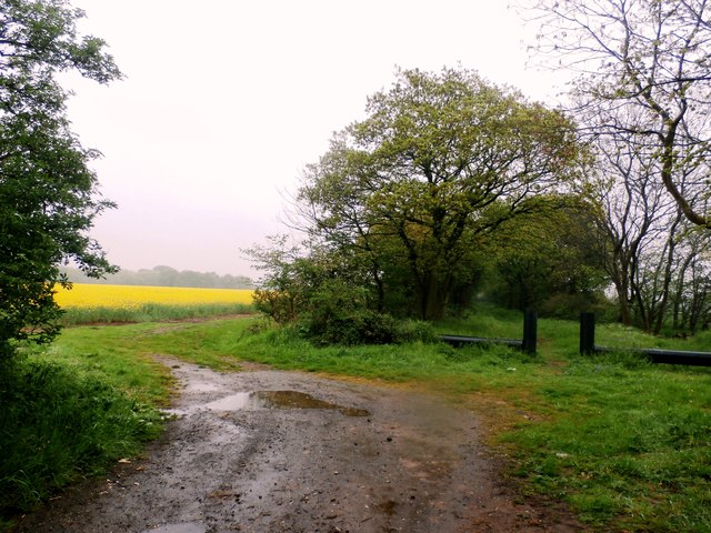 Kilham Lane and Adjoining Fields © Jonathan Clitheroe cc ...