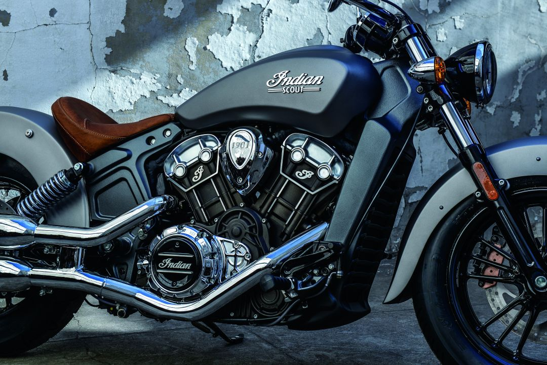 Davidson 2016 Custom Muscle Harley Rod V