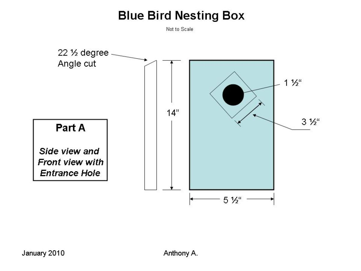 What Direction Should Bluebird House Face