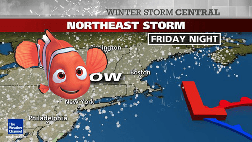 11 Hilarious 'Nemo' Memes In Wake Of Winter Storm [PHOTOS]