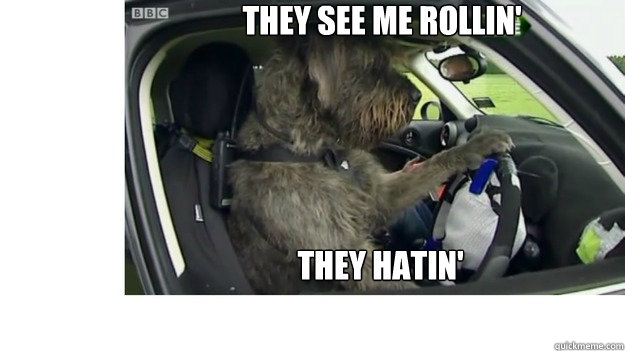 Meme They Me Rollin See