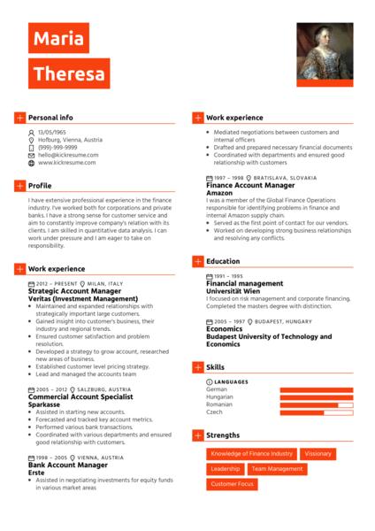 Mid Level Accountant Resume Sample Resume Sample Career