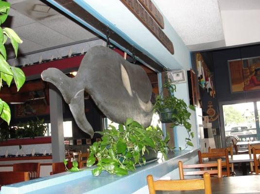 Restaurants Near Me Myrtle Beach