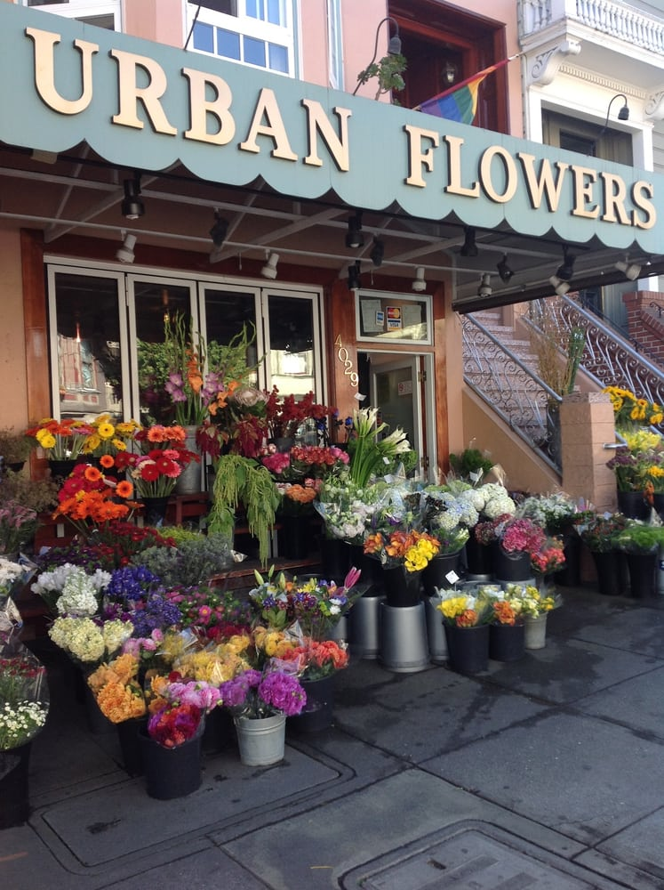 Farm Flowers Fresh Francisco San