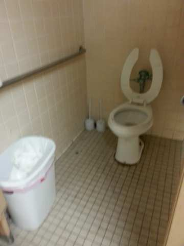 Noticed a creepy restroom  when you see one  3 large dead     Photo of Family Dollar Stores   Houston  TX  United States  Noticed a creepy