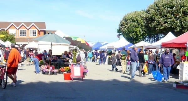Half Moon Bay Farmers Market